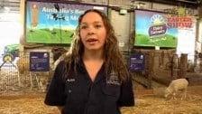 Dairy Farmers Farmyard Nursery