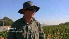 Adam Jones- Tyrrells Wines Employee