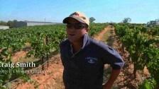 Craig Smith – Tyrrell's Wines Employee