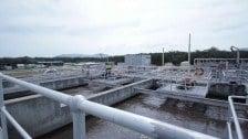 Coffs Harbour Water