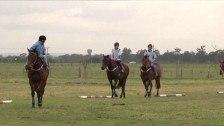 Equine Training at TAFE Western Sydney Institute